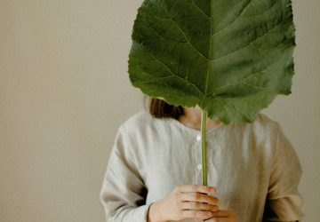 5 Tips to Green up Your Home