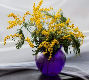 Flower Vase - Feature Image